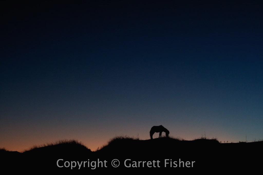 12-Wild Horse Twilight