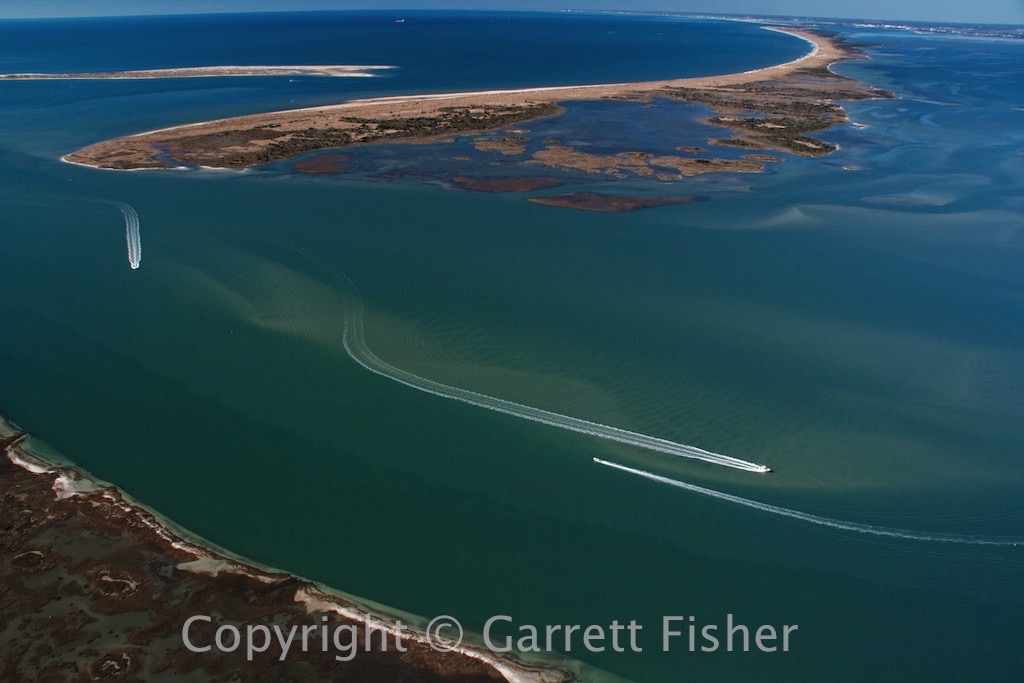 8-Back Sound, Shackleford Banks