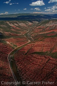Colorado River - V