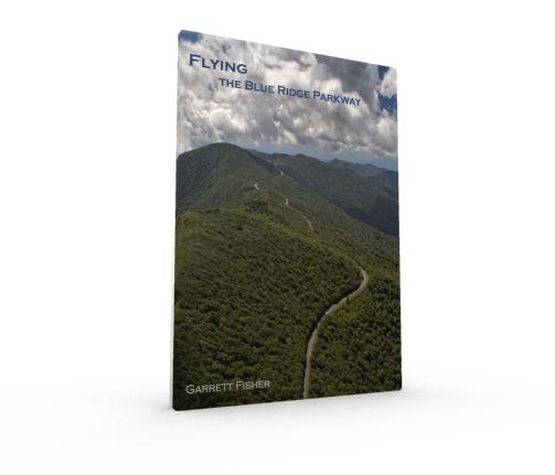 3d cover - BRP