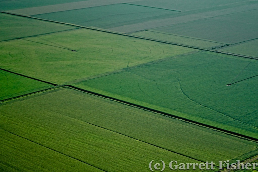Farm Field Texture - Missouri River Valley