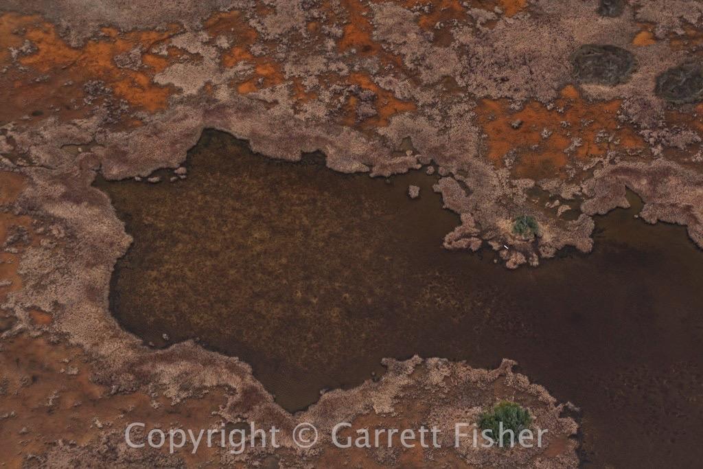 5-Bodie Island Marsh