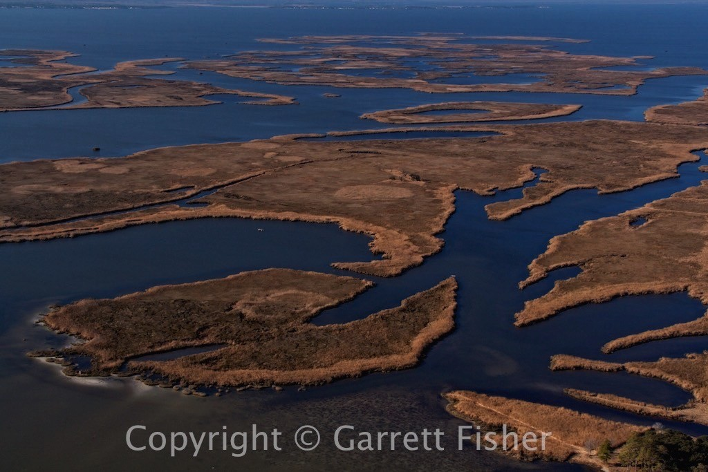 3-Currituck Sound Marshes
